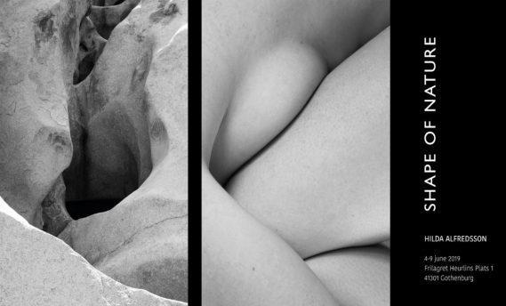 Utställning: Shape of Nature