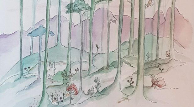 Friplanket: Skogen i rummet