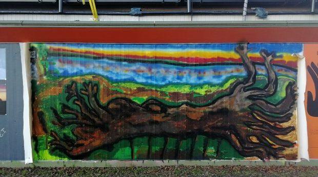 Friplanket: Trädstam vid Vätterns strand